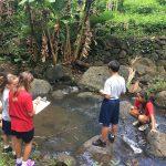 kids observing and studying nature at kawainui marsh
