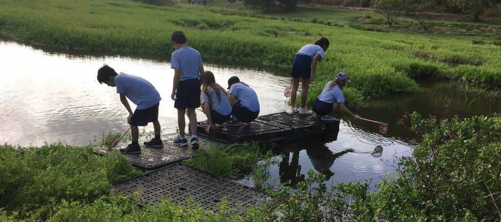 St. Anthony school Middle School at kawainui marsh